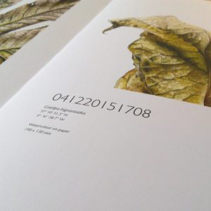 The limited edition hardback book of Leafscape featuring J R Shepherd's botanical watercolour paintings on leaves.